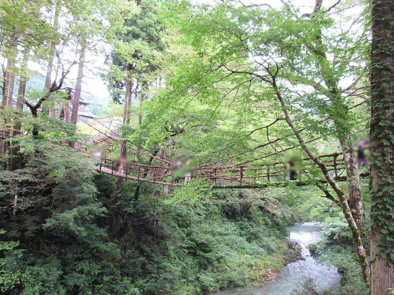 噂の吊り橋「かずら橋」【R3.10】